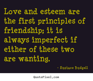 Create picture quote about friendship - Love and esteem are the first principles of friendship;..
