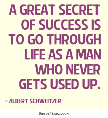 Albert Schweitzer picture quotes - A great secret of success is to go through.. - Life quotes