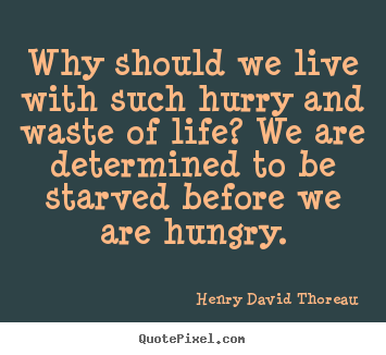 Why should we live with such hurry and waste of life? we are determined.. Henry David Thoreau  life quote